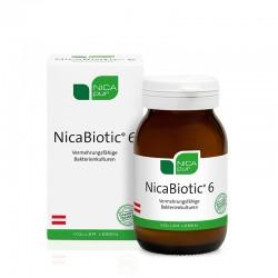 NicaBiotic 6